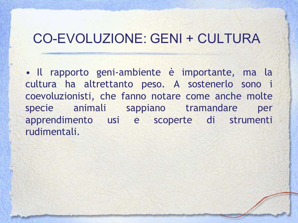 CO-EVOLUZIONE: GENI + CULTURA