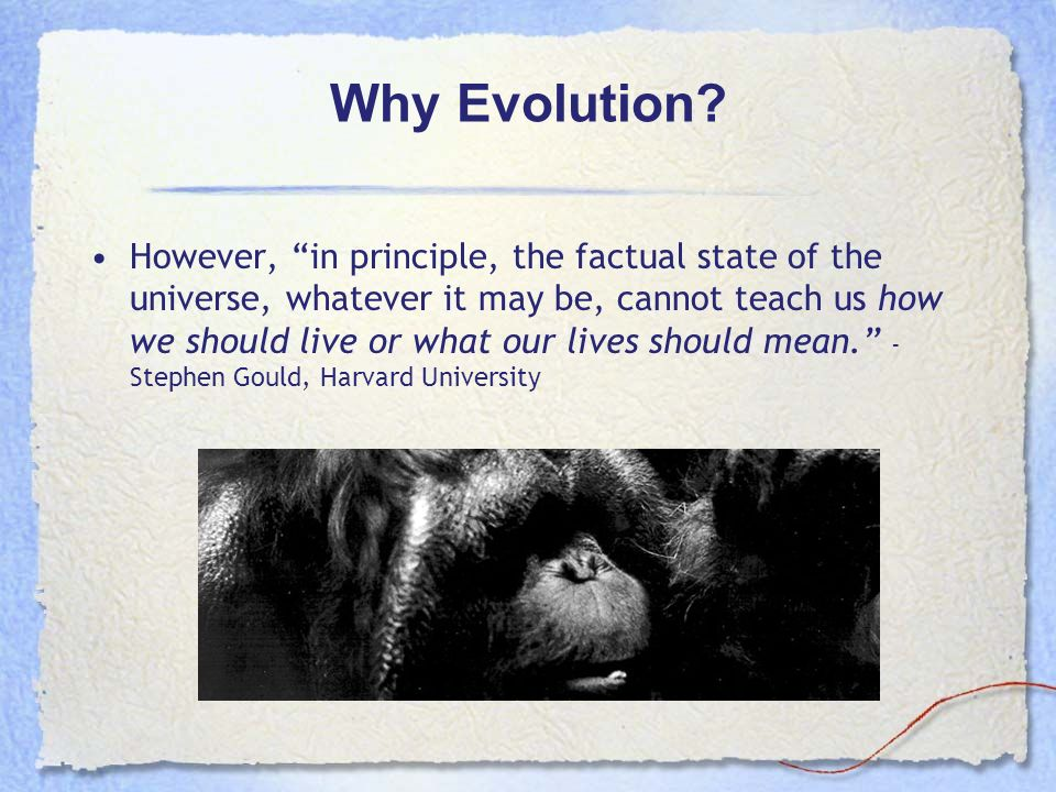 Why Evolution