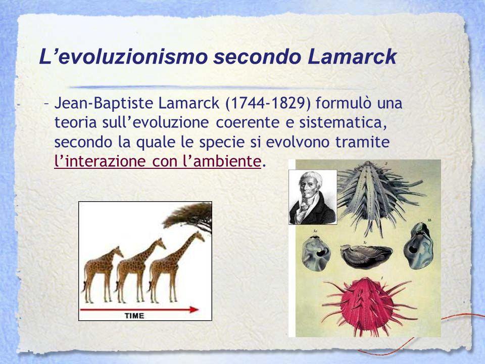 L'evoluzionismo secondo Lamarck