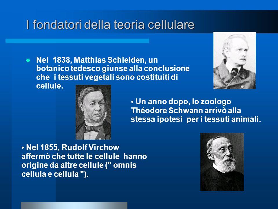 I fondatori della teoria cellulare