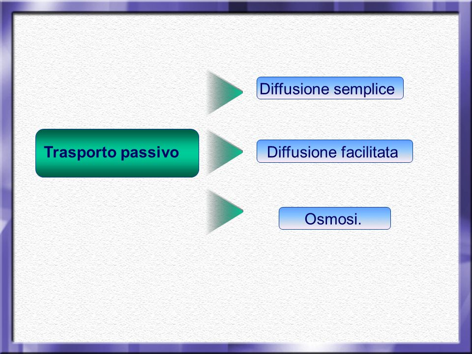 Diffusione semplice Trasporto passivo Diffusione facilitata Osmosi.