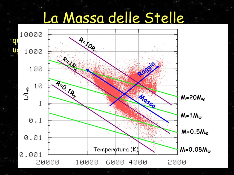 La Massa delle Stelle R=10R R=0.1R R=1R L/L Temperatura (K) M=20M M=1M M=0.5M M=0.08M