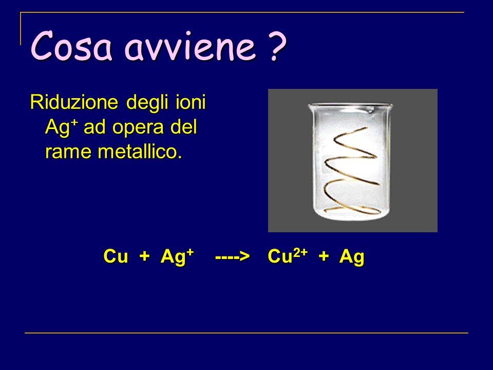 Cosa avviene Riduzione degli ioni Ag+ ad opera del rame metallico.