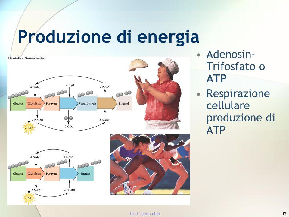Produzione di energia Adenosin-Trifosfato o ATP