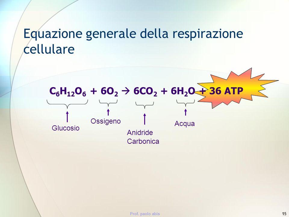 Equazione generale della respirazione cellulare