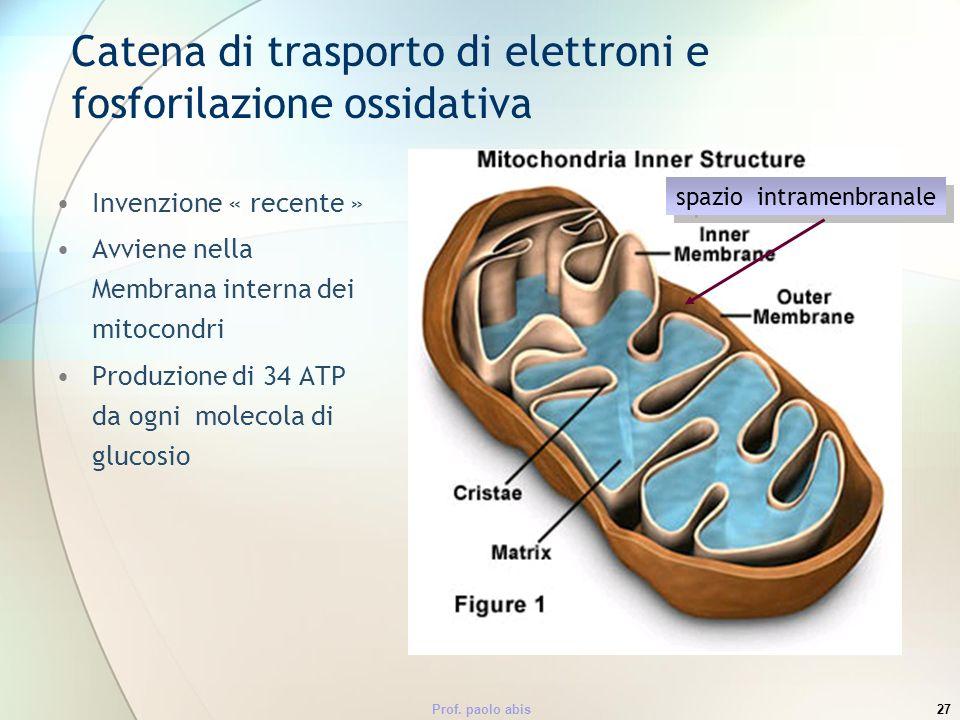 Catena di trasporto di elettroni e fosforilazione ossidativa