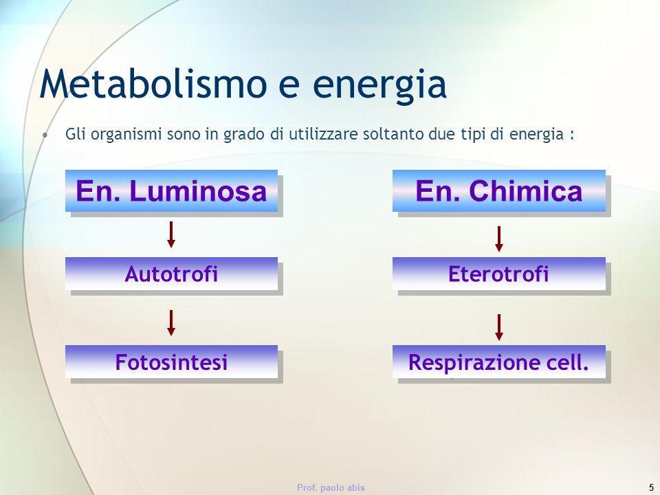 Metabolismo e energia En. Luminosa En. Chimica Autotrofi Eterotrofi