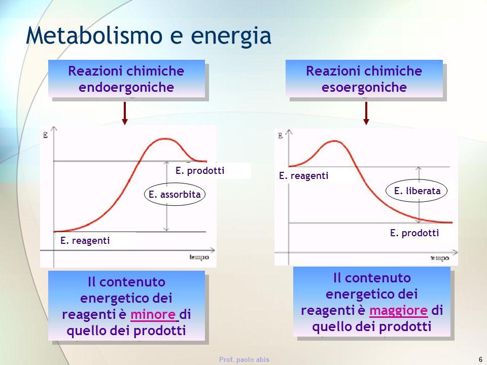 Metabolismo e energia Reazioni chimiche endoergoniche