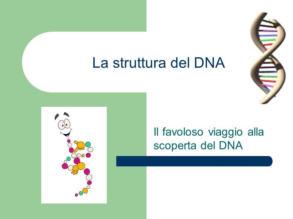 Il favoloso viaggio alla scoperta del DNA