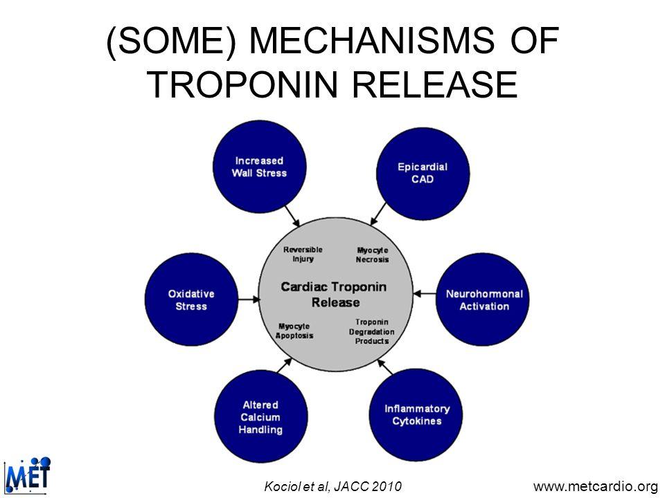 (SOME) MECHANISMS OF TROPONIN RELEASE
