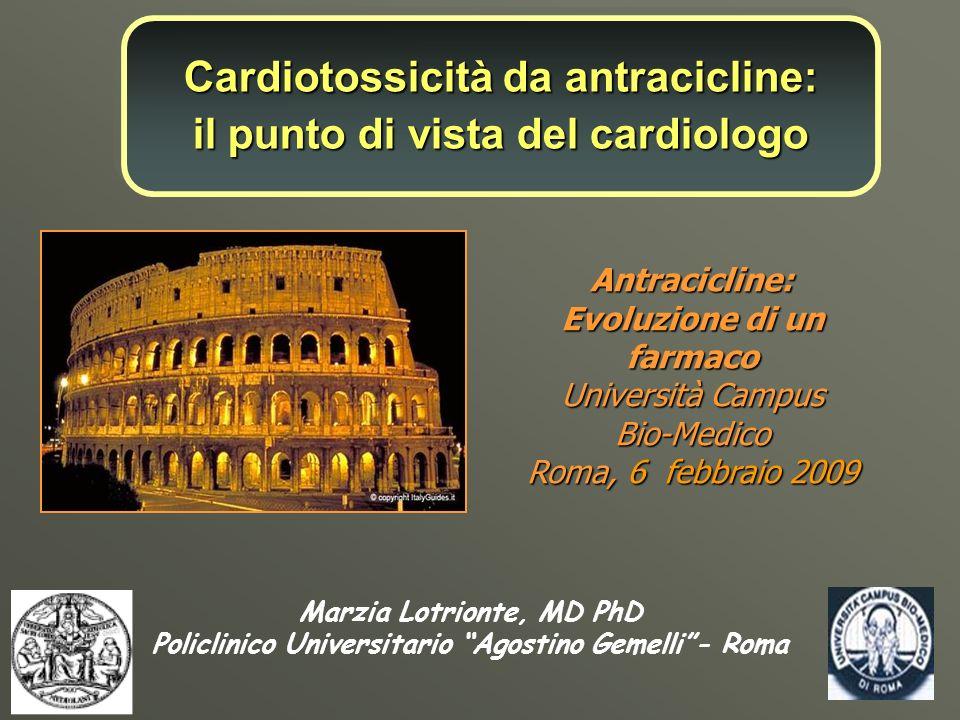 Cardiotossicità da antracicline: il punto di vista del cardiologo