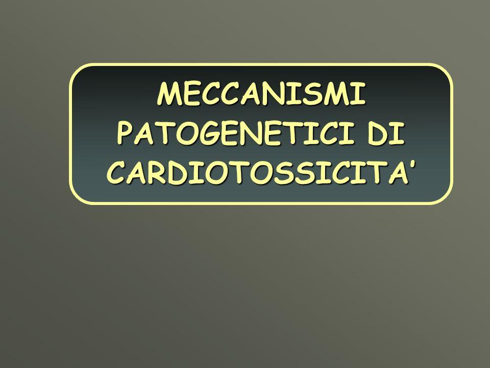MECCANISMI PATOGENETICI DI CARDIOTOSSICITA'