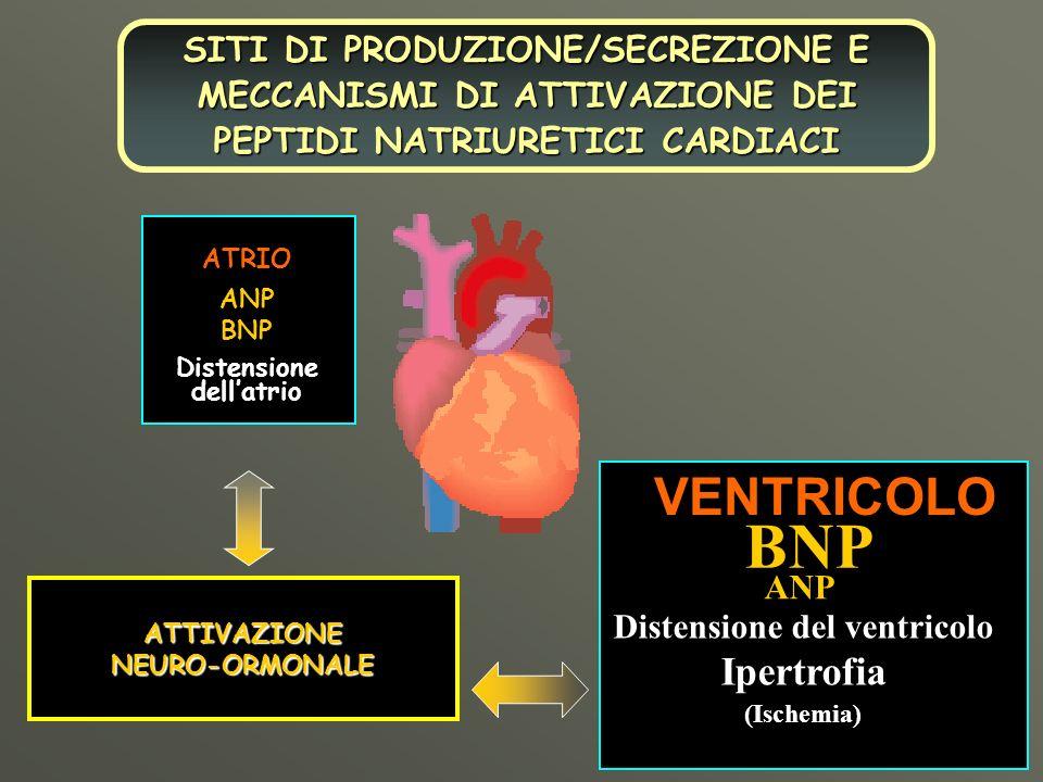 Distensione dell'atrio Distensione del ventricolo