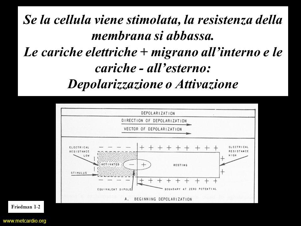 Se la cellula viene stimolata, la resistenza della membrana si abbassa