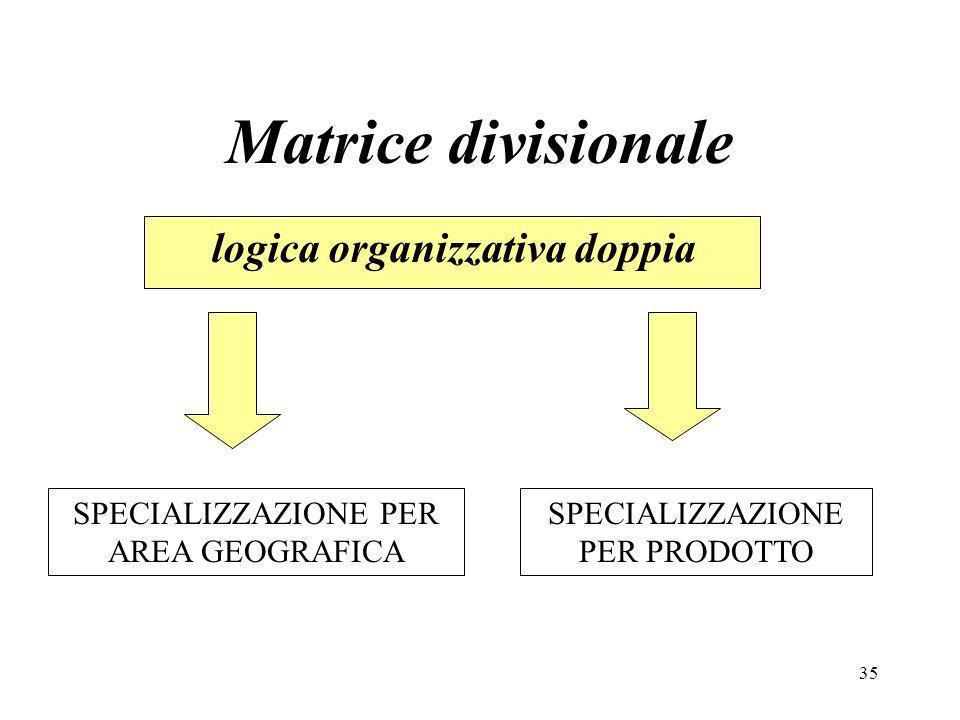 Matrice divisionale logica organizzativa doppia