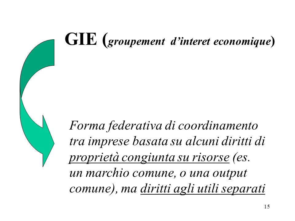 GIE (groupement d'interet economique)