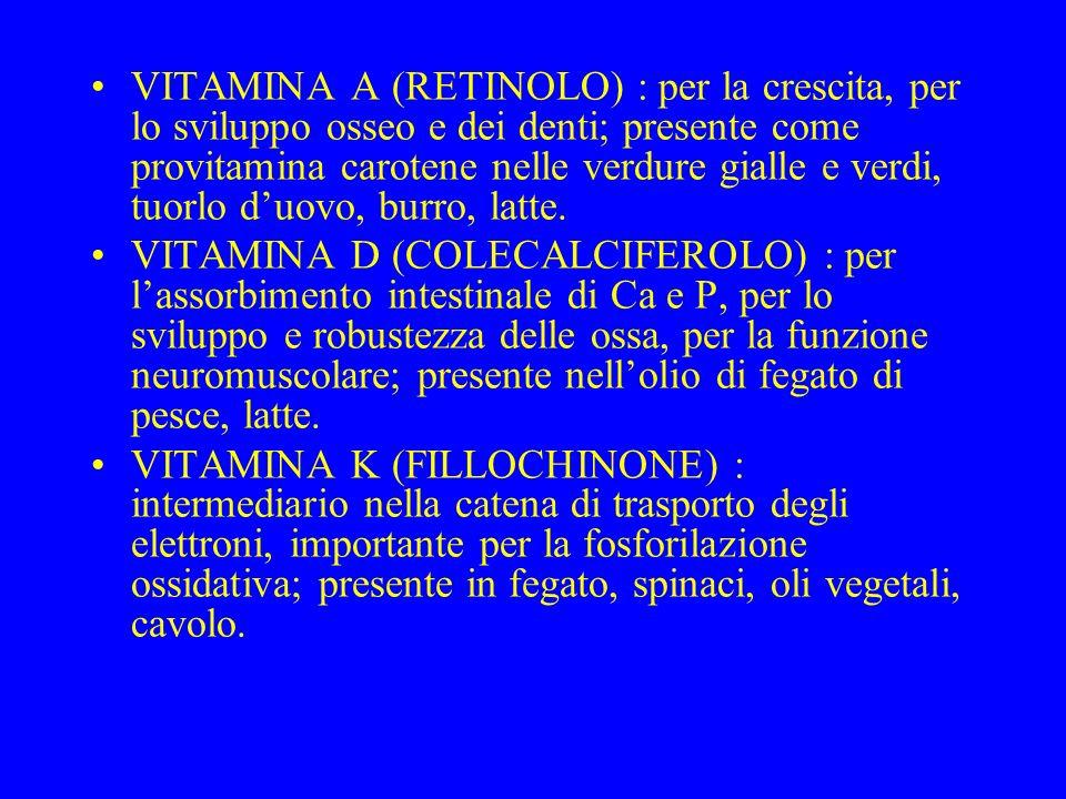 VITAMINA A (RETINOLO) : per la crescita, per lo sviluppo osseo e dei denti; presente come provitamina carotene nelle verdure gialle e verdi, tuorlo d'uovo, burro, latte.