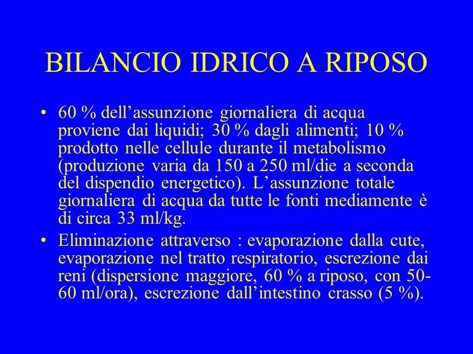 BILANCIO IDRICO A RIPOSO