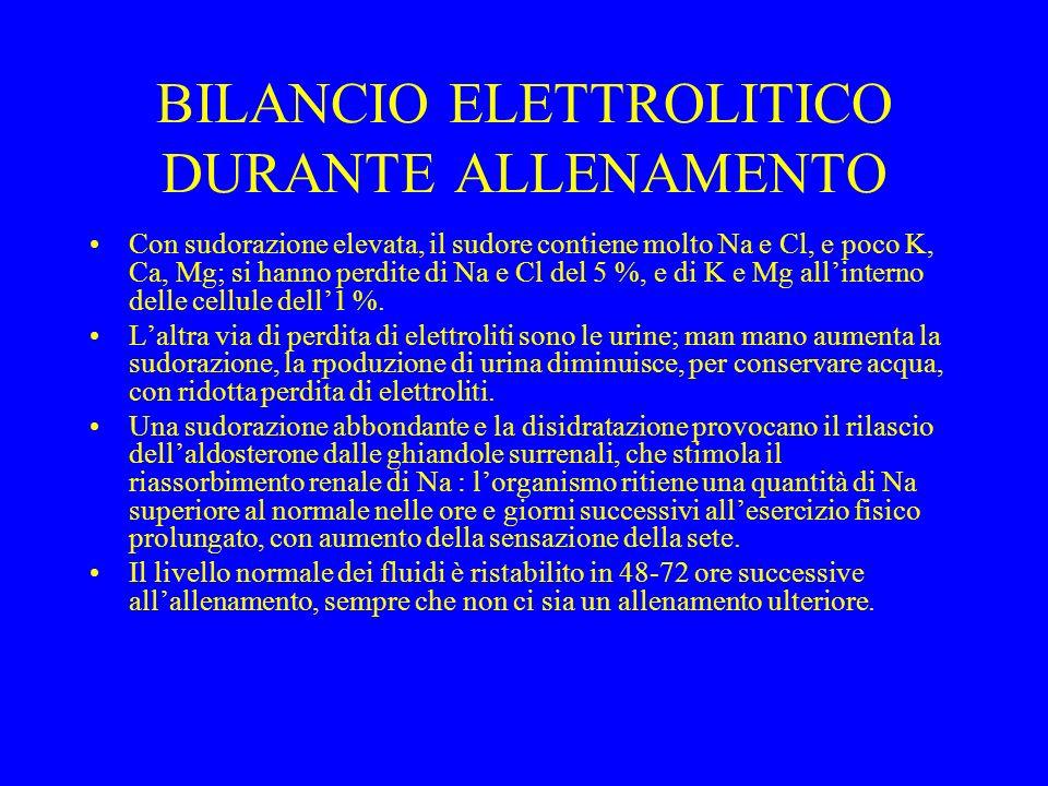 BILANCIO ELETTROLITICO DURANTE ALLENAMENTO