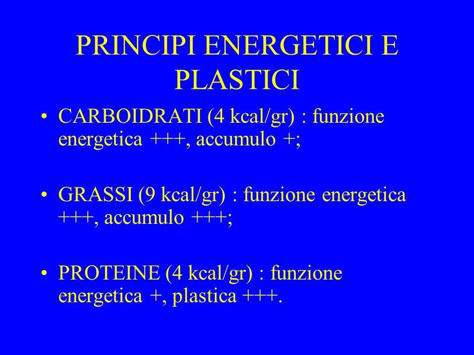 PRINCIPI ENERGETICI E PLASTICI
