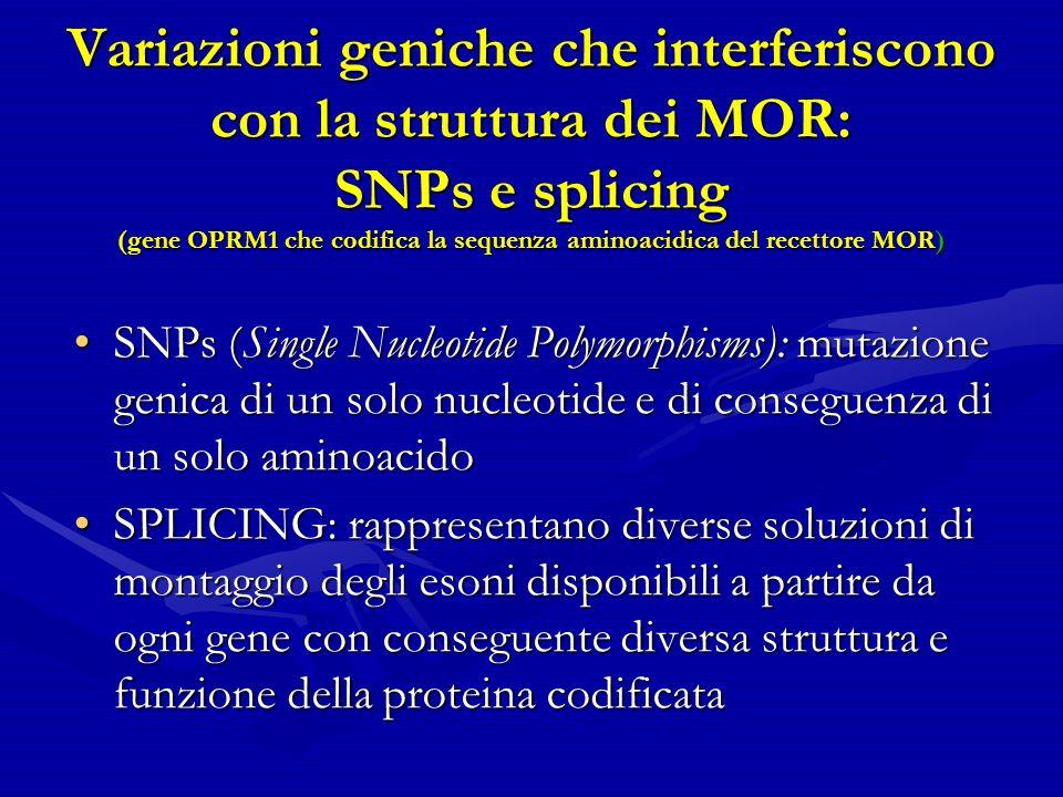 Variazioni geniche che interferiscono con la struttura dei MOR: SNPs e splicing (gene OPRM1 che codifica la sequenza aminoacidica del recettore MOR)