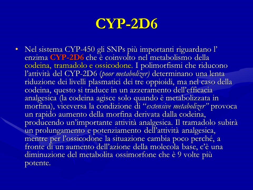 CYP-2D6
