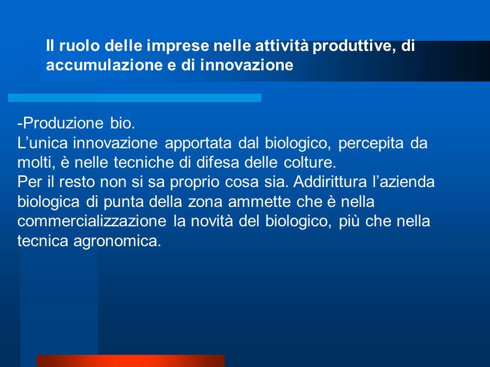 Il ruolo delle imprese nelle attività produttive, di accumulazione e di innovazione