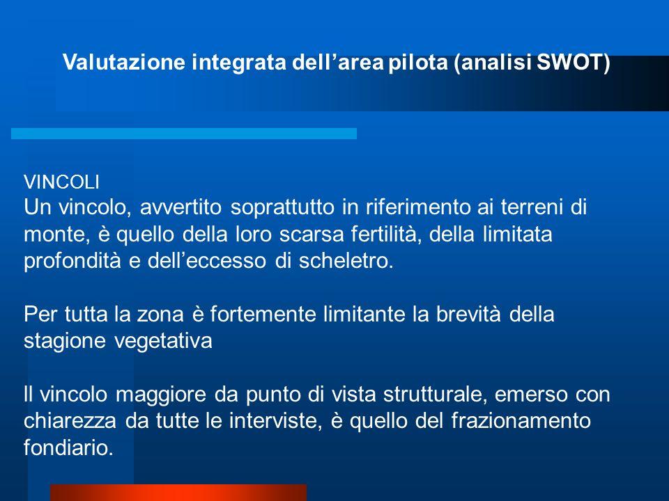 Valutazione integrata dell'area pilota (analisi SWOT)