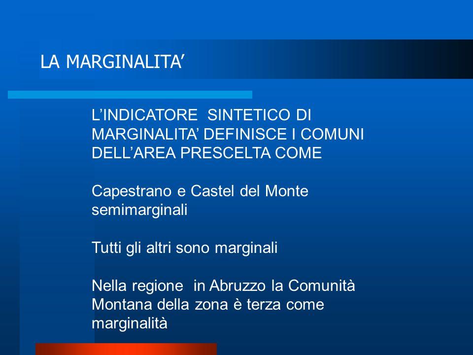 LA MARGINALITA' L'INDICATORE SINTETICO DI MARGINALITA' DEFINISCE I COMUNI DELL'AREA PRESCELTA COME.