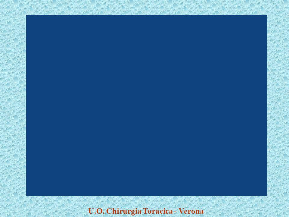 U.O. Chirurgia Toracica - Verona