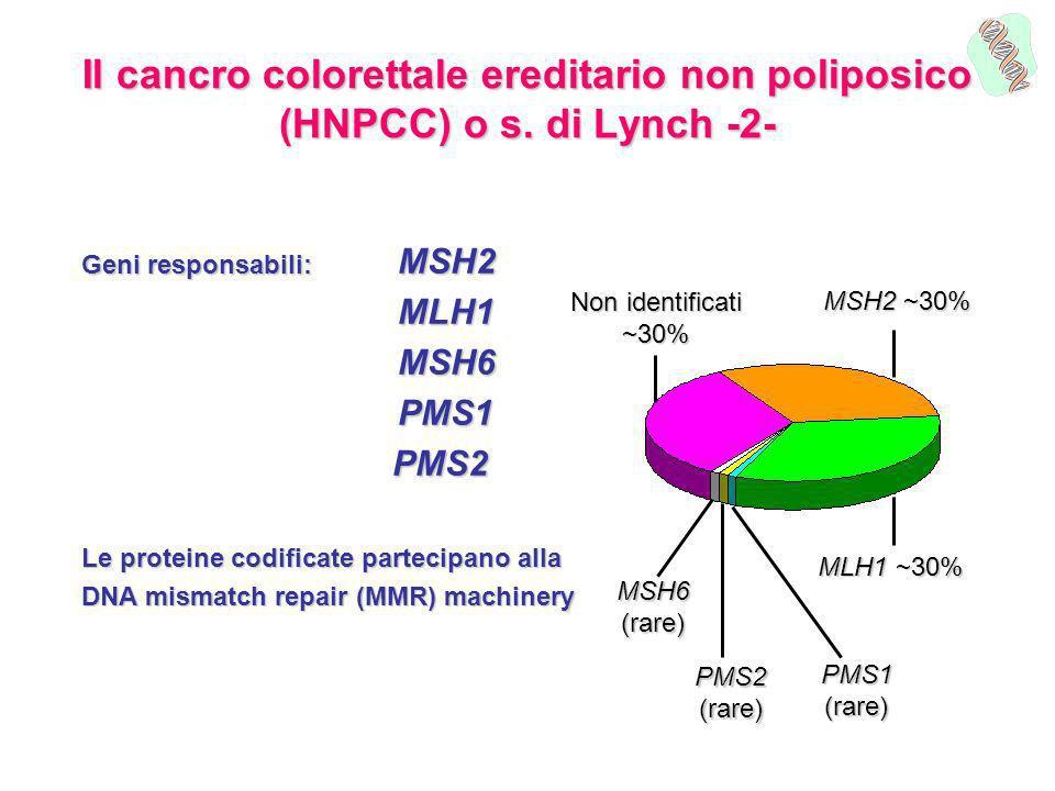 Il cancro colorettale ereditario non poliposico (HNPCC) o s