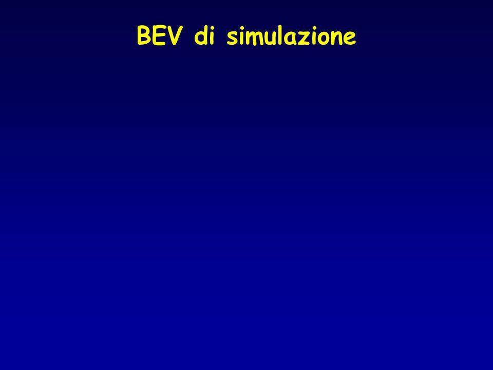 BEV di simulazione