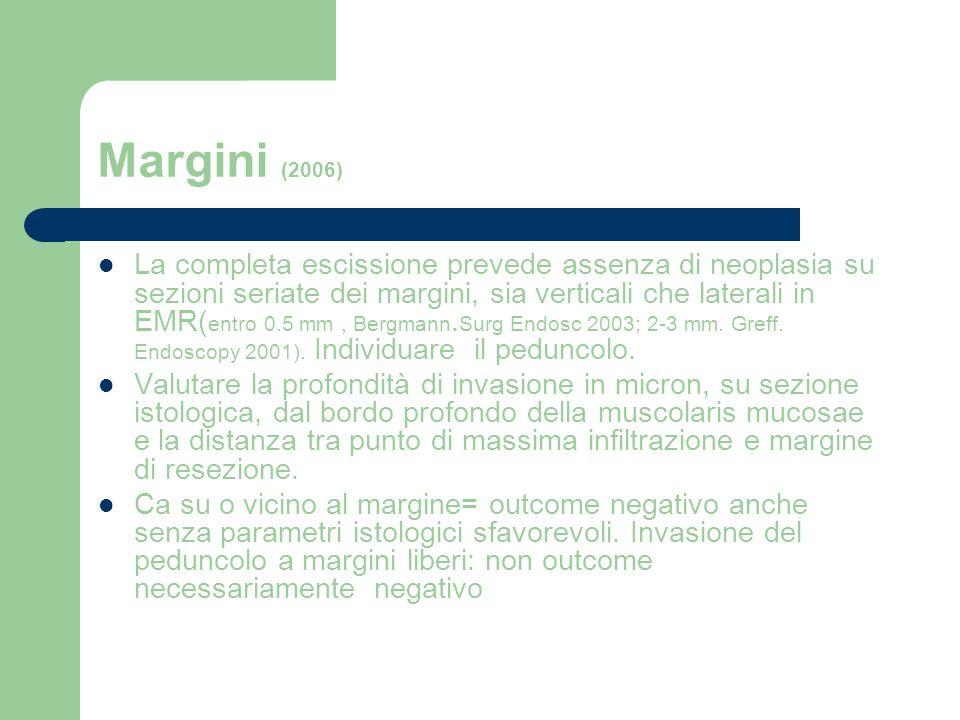 Margini (2006)