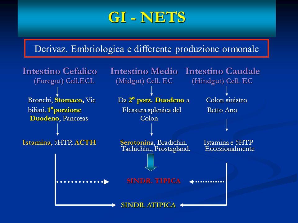 Derivaz. Embriologica e differente produzione ormonale