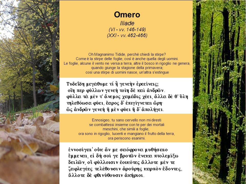 Omero Iliade (VI - vv. 146-149) (XXI - vv. 462-466)