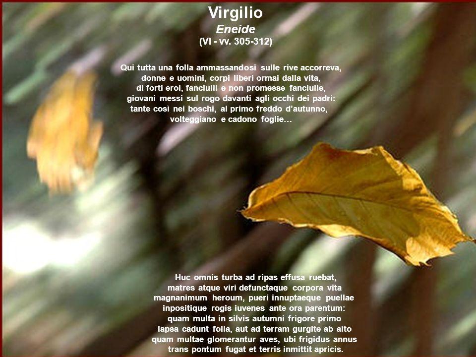Virgilio Eneide (VI - vv. 305-312)