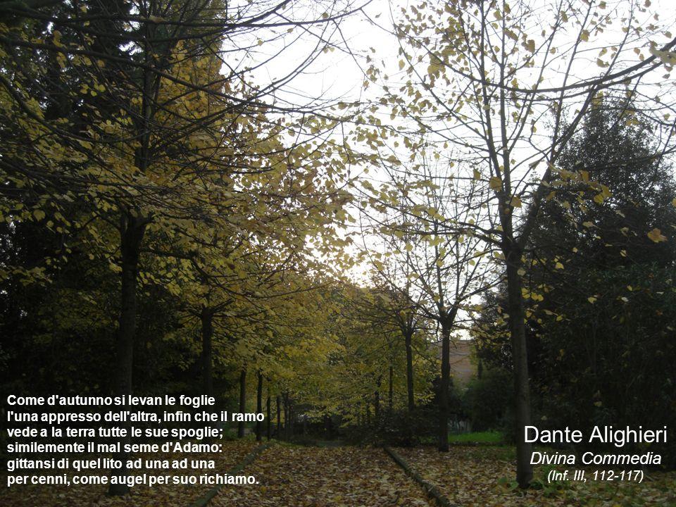 Dante Alighieri Divina Commedia Come d autunno si levan le foglie