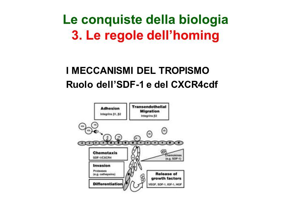Le conquiste della biologia 3. Le regole dell'homing