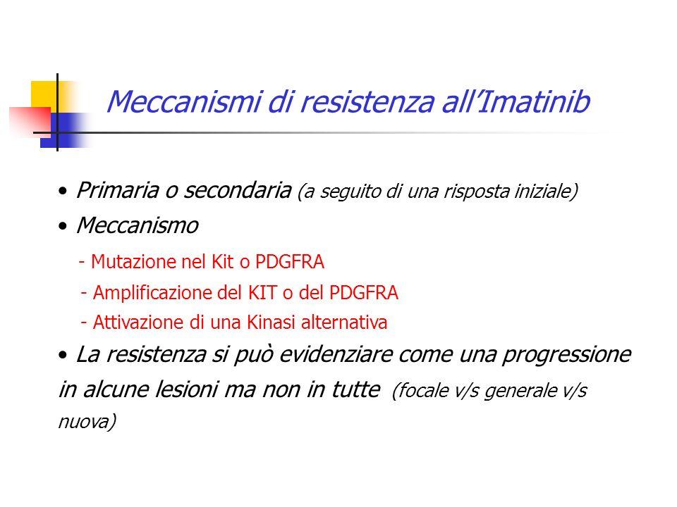 Meccanismi di resistenza all'Imatinib