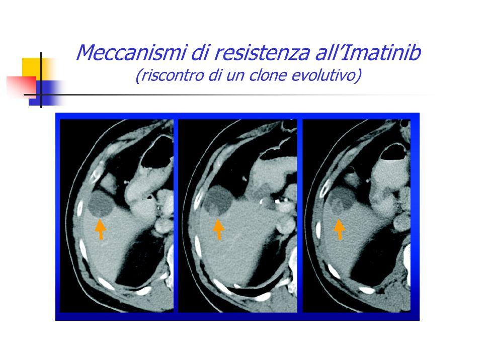Meccanismi di resistenza all'Imatinib (riscontro di un clone evolutivo)