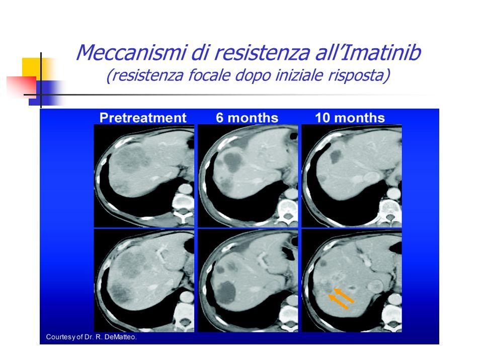 Meccanismi di resistenza all'Imatinib (resistenza focale dopo iniziale risposta)
