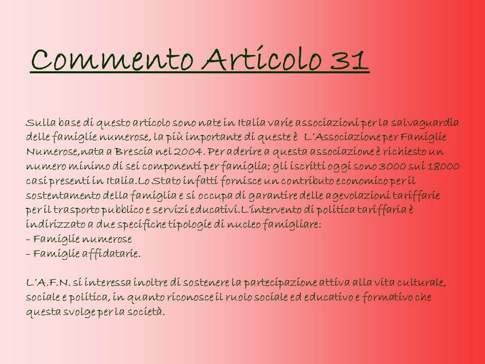 Commento Articolo 31
