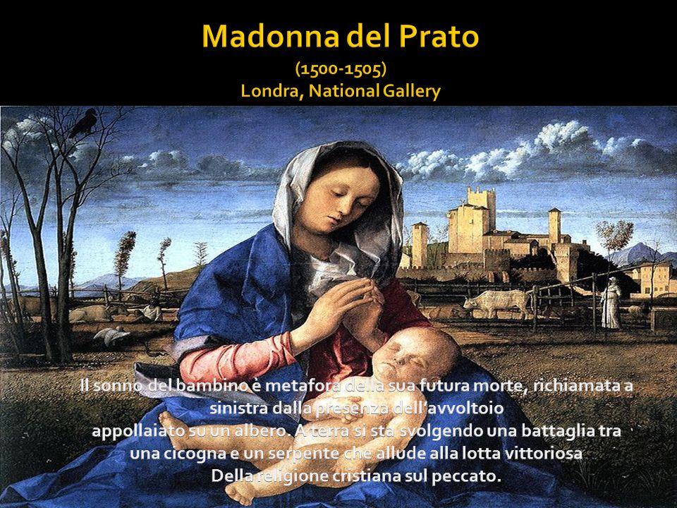 Madonna del Prato (1500-1505) Londra, National Gallery