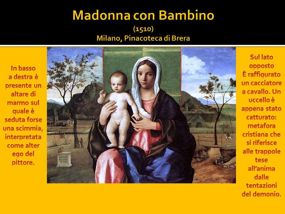 Madonna con Bambino (1510) Milano, Pinacoteca di Brera