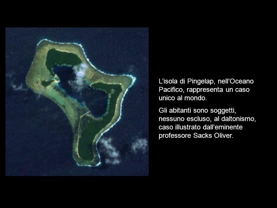 L'isola di Pingelap, nell'Oceano Pacifico, rappresenta un caso unico al mondo.