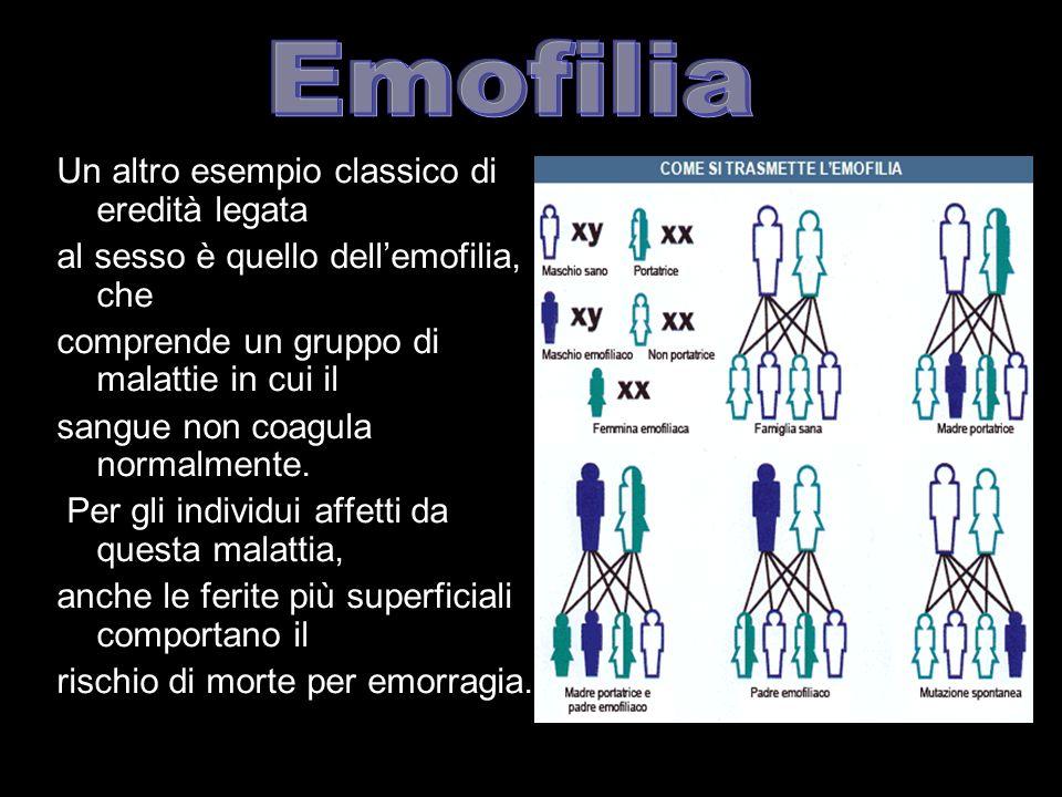 Emofilia Un altro esempio classico di eredità legata