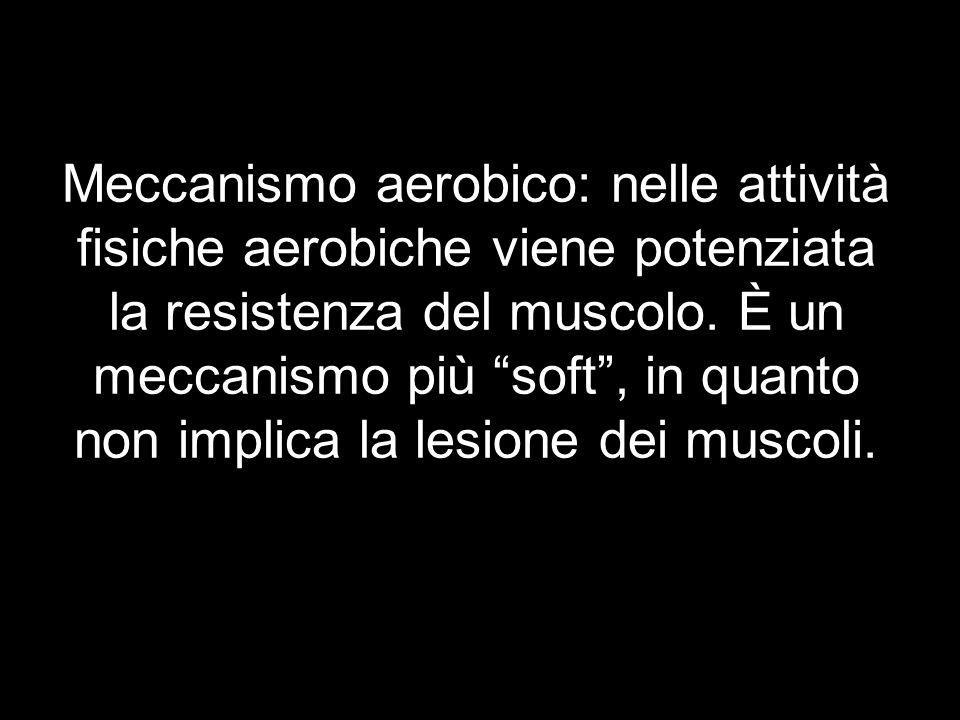 Meccanismo aerobico: nelle attività fisiche aerobiche viene potenziata la resistenza del muscolo.