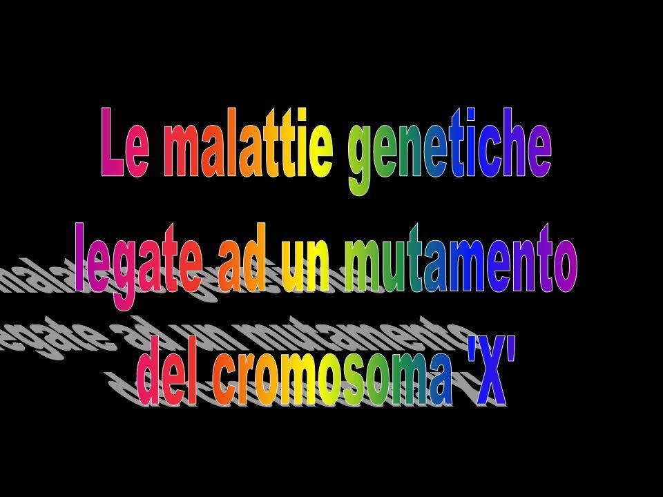 Le malattie genetiche legate ad un mutamento del cromosoma X