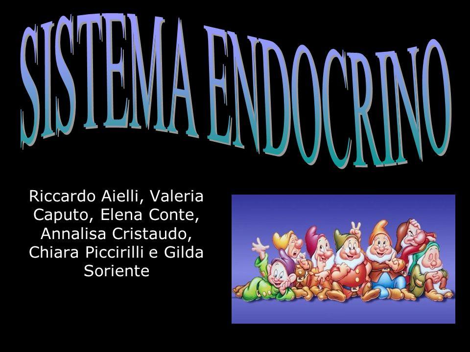 SISTEMA ENDOCRINO Riccardo Aielli, Valeria Caputo, Elena Conte, Annalisa Cristaudo, Chiara Piccirilli e Gilda Soriente.