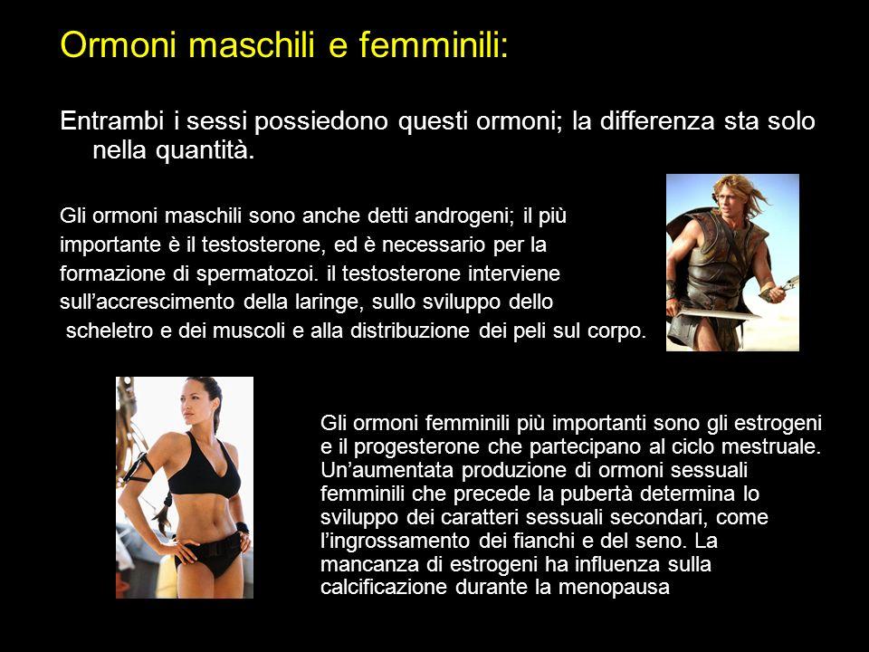 Ormoni maschili e femminili: